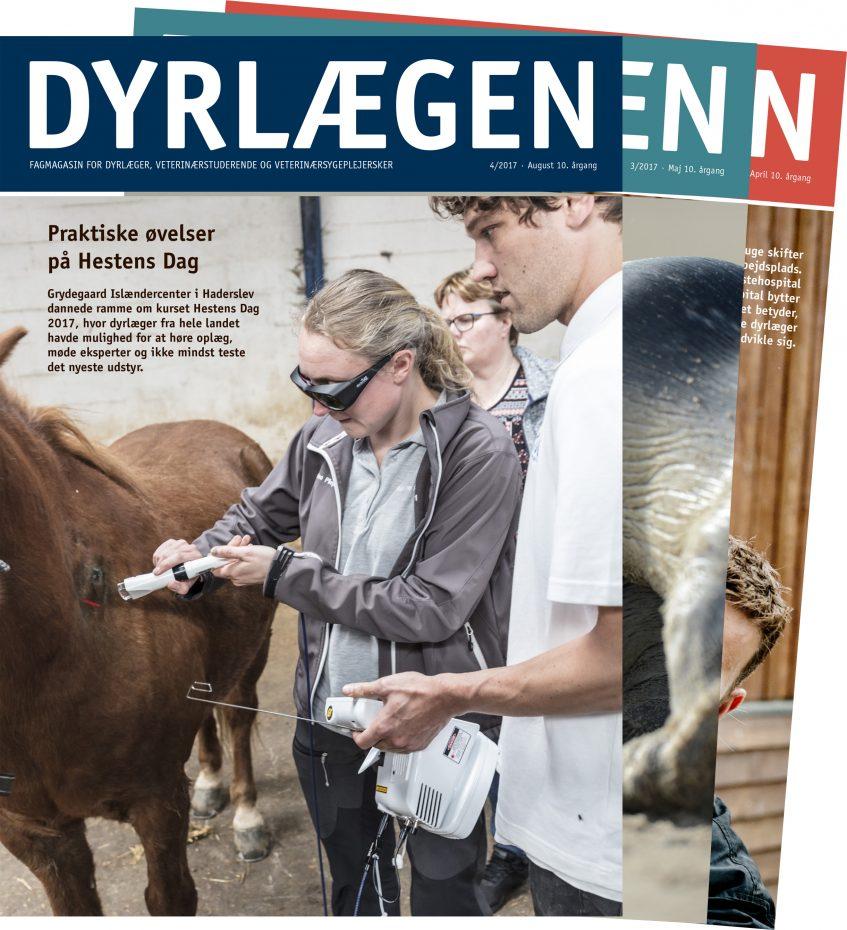 dyrlaegen_abbonement_side_billede_v2